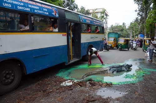 Crocodile-in-Bengaluru-City's-Pothole (1)