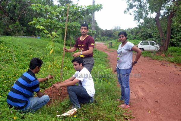 bikers_tree_planting-010