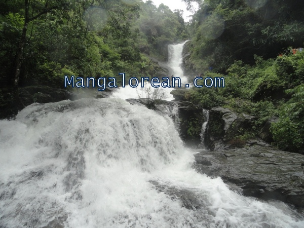 Iruppu-Falls-in-Full-Flow-03072015 (13)