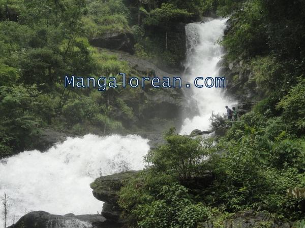 Iruppu-Falls-in-Full-Flow-03072015 (7)