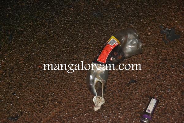 shivasubramanyam-suicide-attempt-20150712 2304x1536-004