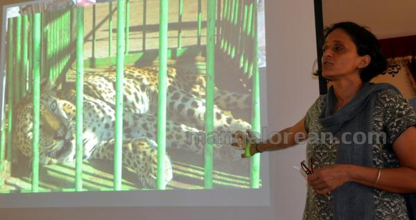 06-leopard-press-20150820-005