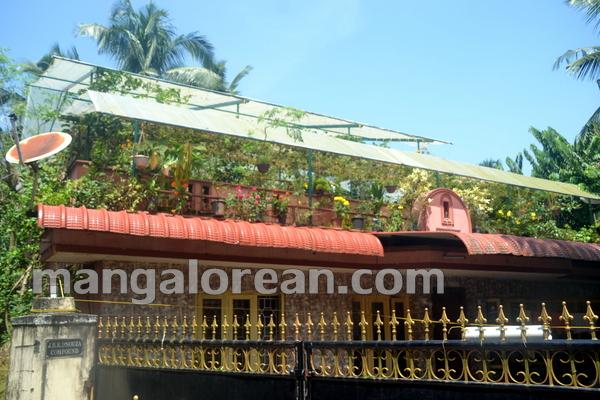 1-terrace-garden