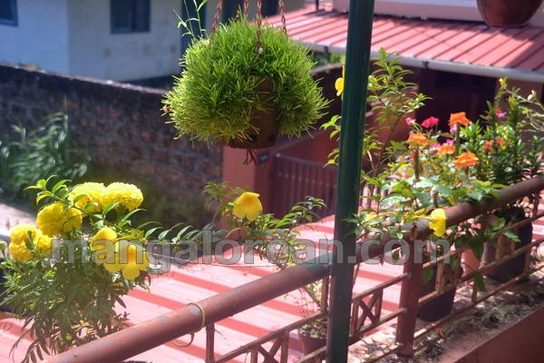 Mangaluru It 39 S Blany D 39 Souza 39 S Terrace No It 39 S A