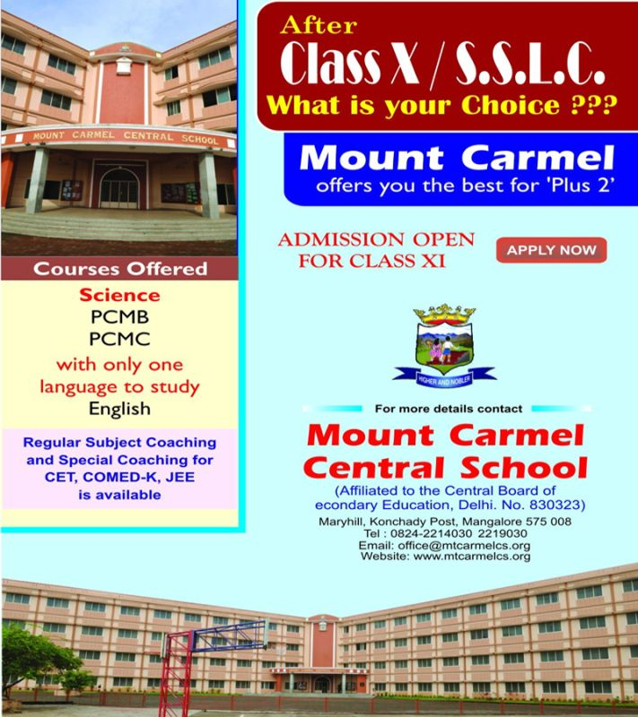 image001mount-carmel-central-school-20160330-001