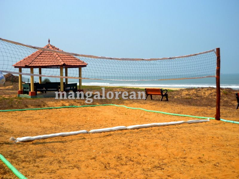 image016tree-park-tannirbavi-beach-1-20160326-016