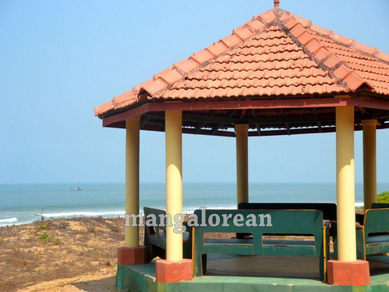 image017tree-park-tannirbavi-beach-1-20160326-017