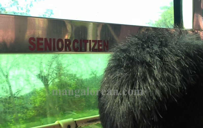 image001senior-citizen-20160414-001