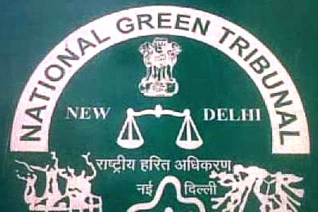 tribunal-green-01