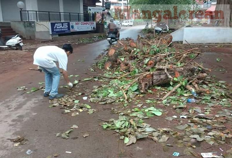 Ashwatha-Tree-crashing-down-Karangalpady-Mangaluru-01 (2)