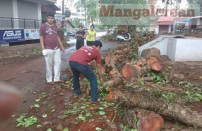 Ashwatha-Tree-crashing-down-Karangalpady-Mangaluru-01 (5)