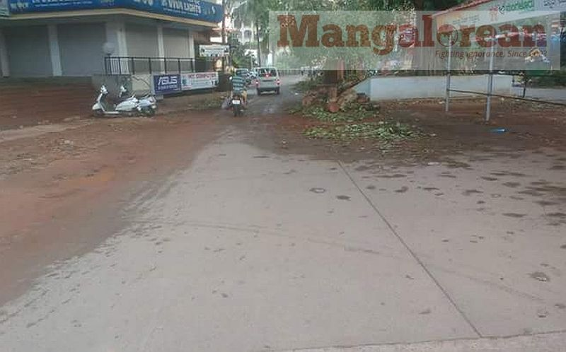 Ashwatha-Tree-crashing-down-Karangalpady-Mangaluru-01 (6)