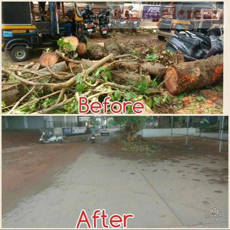 Ashwatha-Tree-crashing-down-Karangalpady-Mangaluru-01 (8)