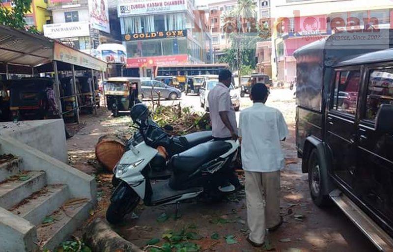 huge-Ashwatha-tree-crashing-down-Karangalpady-Mangaluru (5)