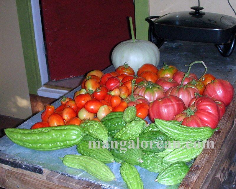 image003glen-leo-mendonca-kitchen-garden-020160521-003