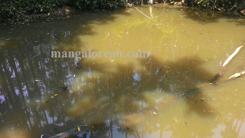 image004children-drown-pond-020160511-004