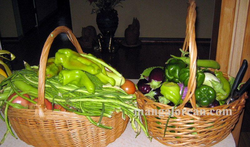image011glen-leo-mendonca-kitchen-garden-020160521-011