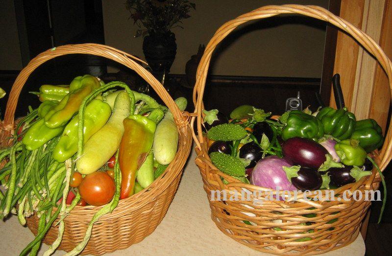 image012glen-leo-mendonca-kitchen-garden-020160521-012