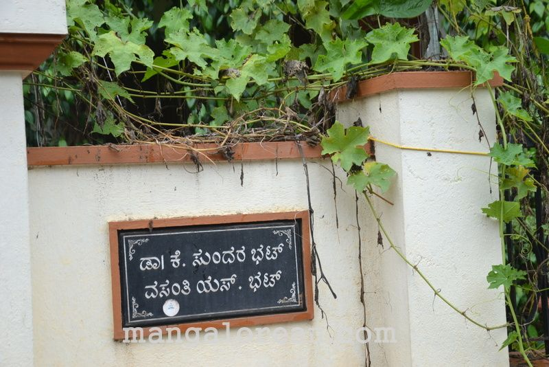 image002gardener-dr-ks-bhat-grows-plants-using-no-soil-20160623-002