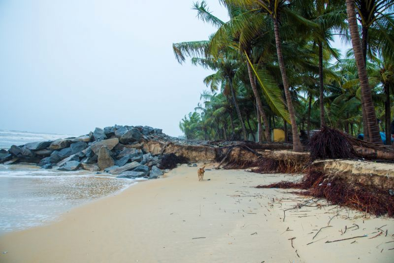 image006sea-erosion-threat- for- many- houses- in-udupi-district-20160629