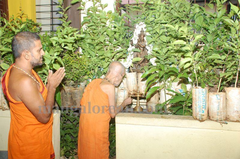 image009laksh-vraksha-counter-krishna-temple-20160614