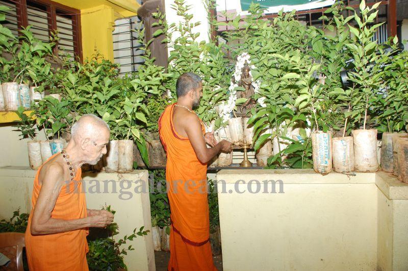 image011laksh-vraksha-counter-krishna-temple-20160614