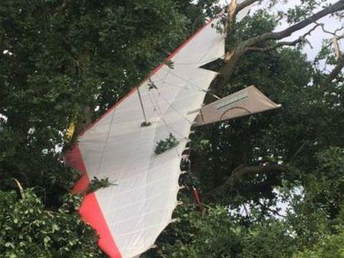 Pilot, 91, stuck in a tree after microlight crash
