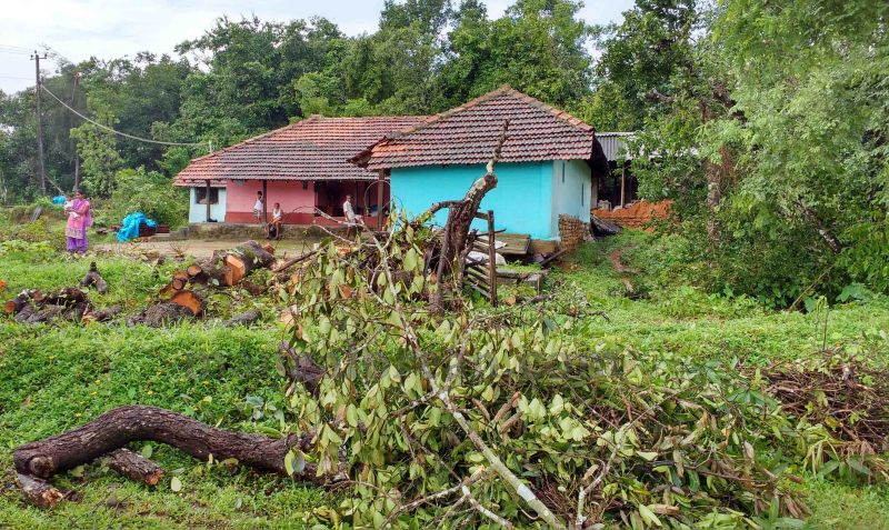 image005rain-wind-affected-areas-visit-pramod-20160707