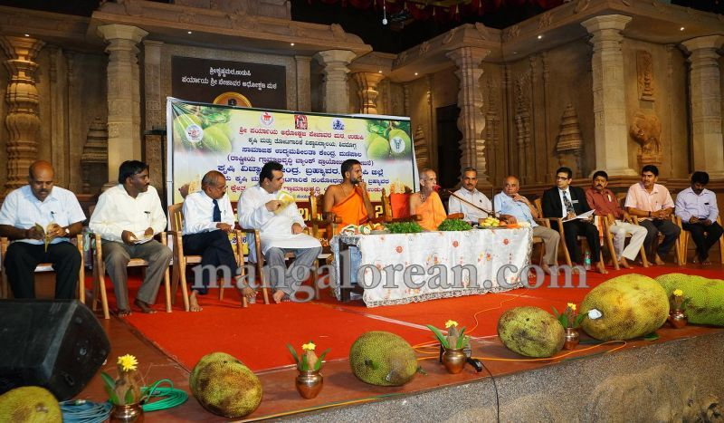 image005state-level-jackfruit-mela-attracts-good-crowd-201607-01