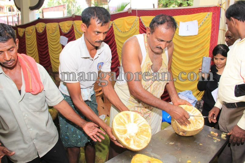 image029state-level-jackfruit-mela-attracts-good-crowd-201607-01