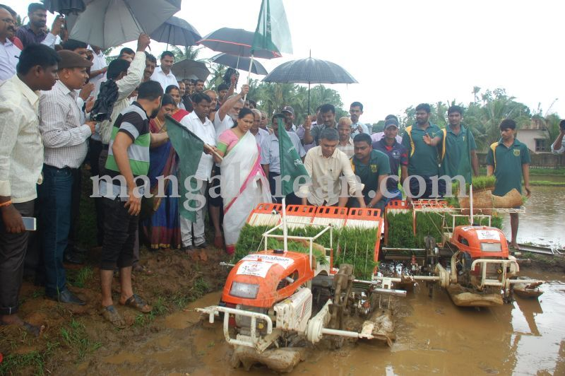 image071krishna-byre-gowda-launches-mechanised-paddy-cultivation-campaign-20160710