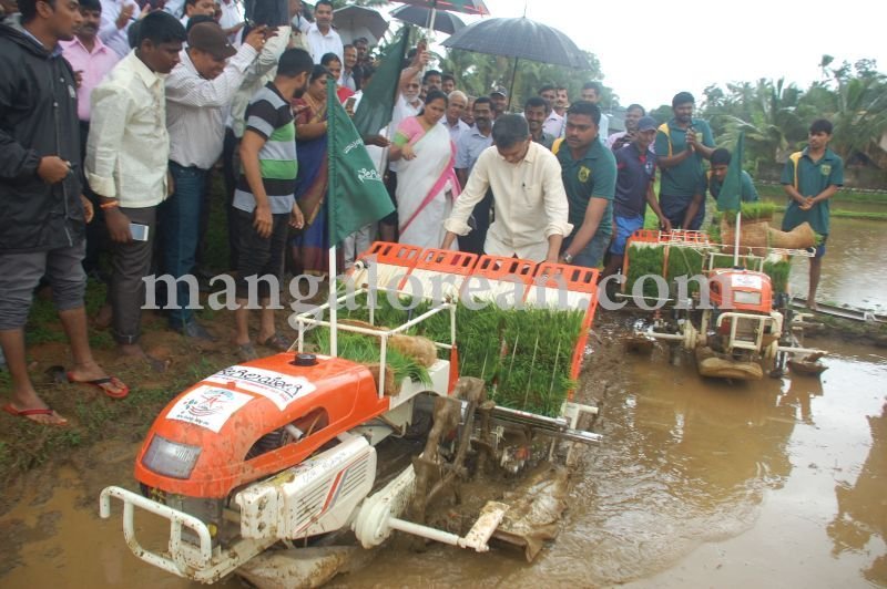 image072krishna-byre-gowda-launches-mechanised-paddy-cultivation-campaign-20160710