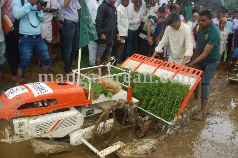 image073krishna-byre-gowda-launches-mechanised-paddy-cultivation-campaign-20160710