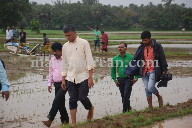 image090krishna-byre-gowda-launches-mechanised-paddy-cultivation-campaign-20160710