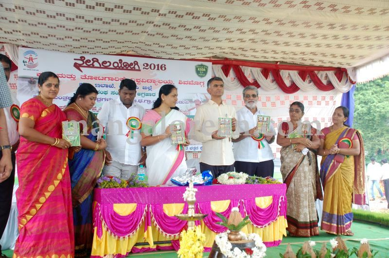 image112krishna-byre-gowda-launches-mechanised-paddy-cultivation-campaign-20160710