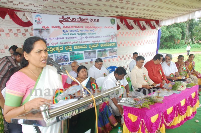 image119krishna-byre-gowda-launches-mechanised-paddy-cultivation-campaign-20160710