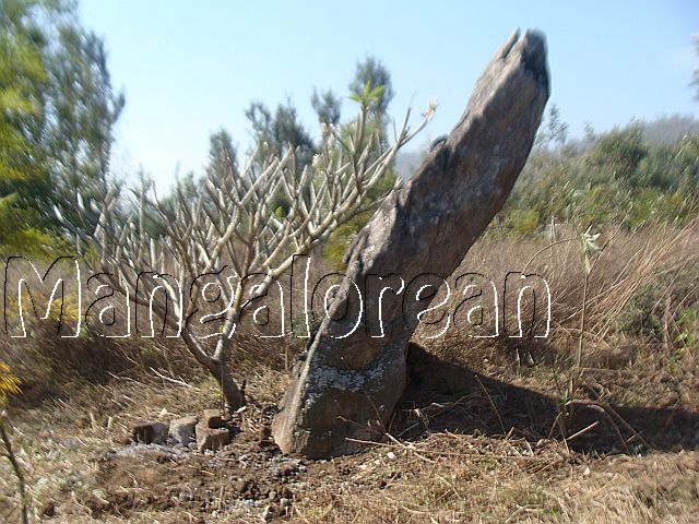 Megalithic-Burial-Site-Discovered=Kodagu (2)