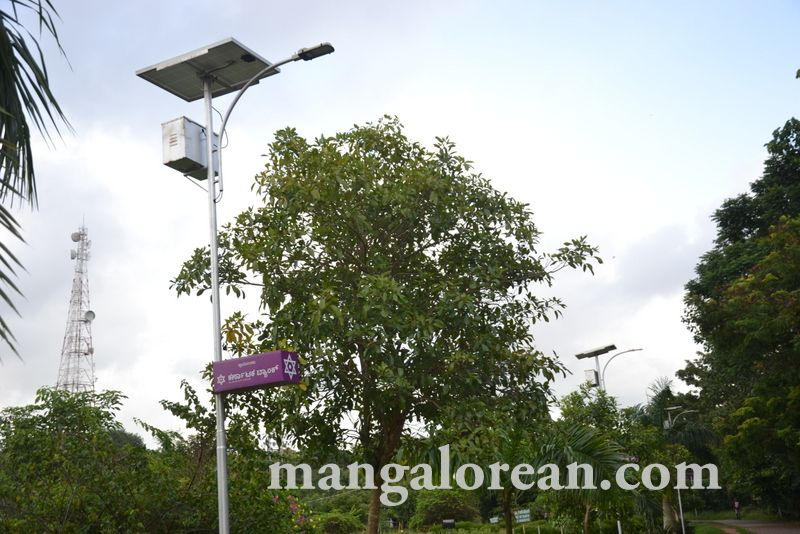 image005kadri-solar-light-20160822-005