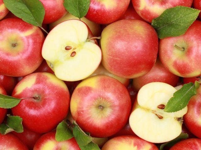 apples-20160926