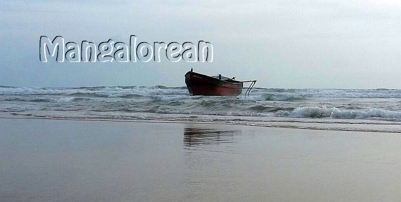 boat-abandoned-bikampady (5)