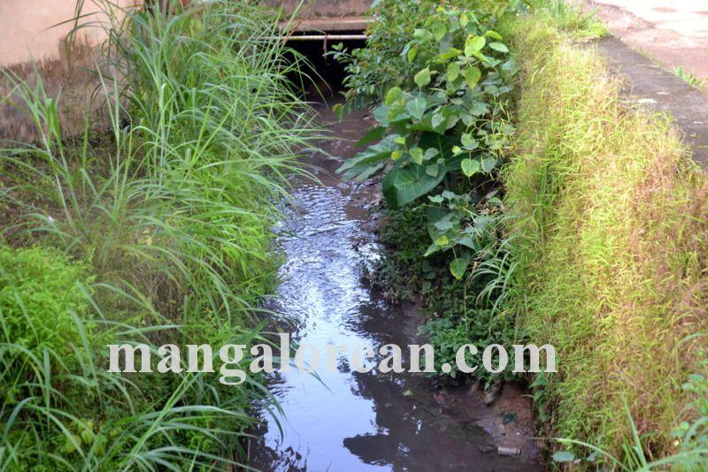 image002open-drainage-20160924-002