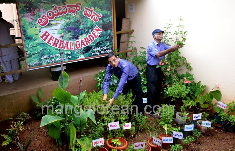 image005swacchbharat-mission-20160925-005