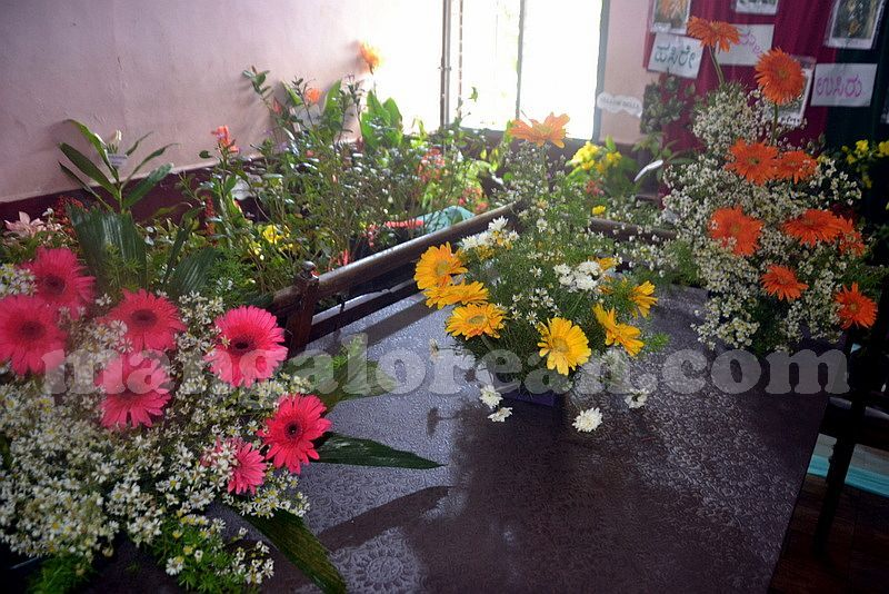 image009st-agnes-special-school-20160927-009