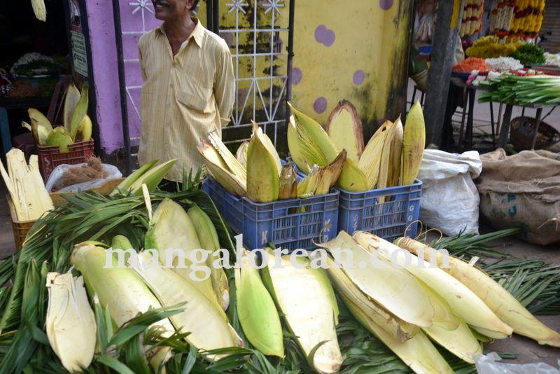 image012kudla-ganesh-chaturthi-20160903-012
