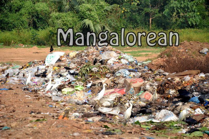 image007haven-of-garbage-20161030007