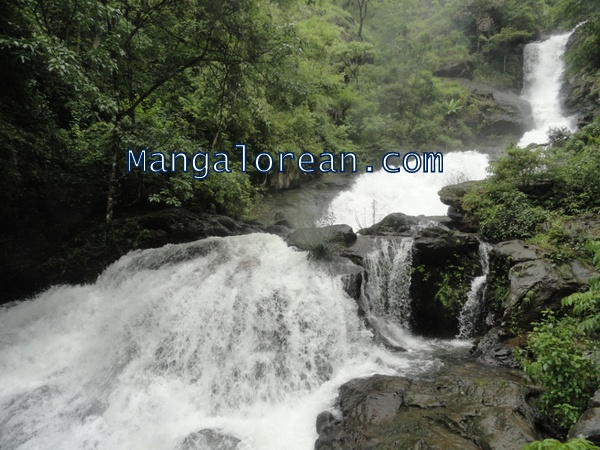 Madikeri: A Feast for the Eyes with Iruppu Falls in Full